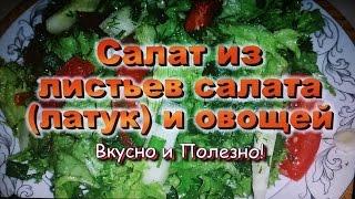 Салат из Листьев Салата (латук) и овощей! / Salad of lettuce (lettuce) and vegetables!