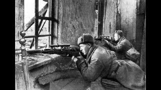 История противостояния советских и германских  снайперов во время Сталинградской битвы