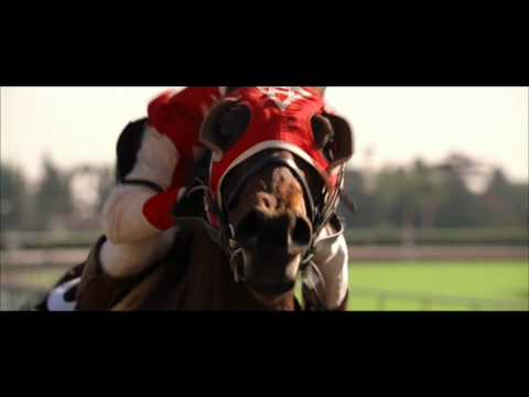 Seabiscuit  Final Race