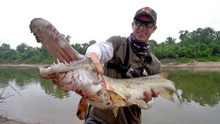 Searching for Giant Alligator Gar in Texas - ft. LakeForkGuy