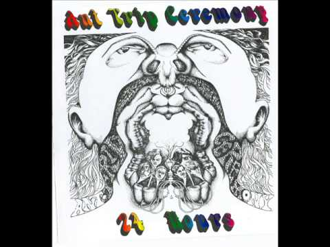Ant Trip Ceremony - Pale Shades Of Gray