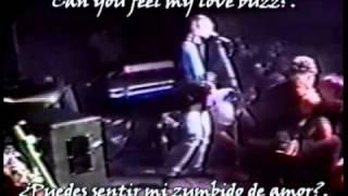 Download lagu Nirvana - Love Buzz (subtitulado español english)