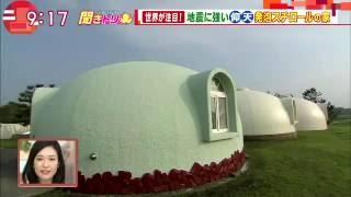 発泡スチロールの家