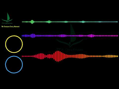 anikdote-&-culture-code---don't-let-it-go-(feat.-brado-sanz)-[audio-spectrum-music]