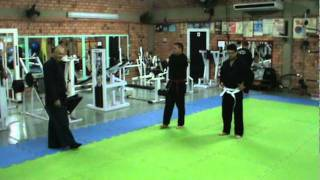 Video TREINO DE HAPKIDO 17-05-11 download MP3, 3GP, MP4, WEBM, AVI, FLV September 2018