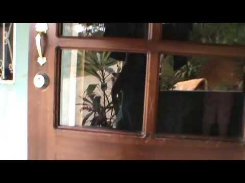 nice wooden door with nice hardware in it