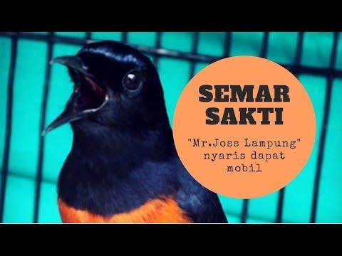 Gini Loh AKSI Murai Batu SS Semar Sakti [ Juara BnR AWARD 2019 Bawa Mobil ] - YouTube