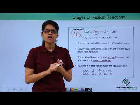 Organic Reactions - Free Radical