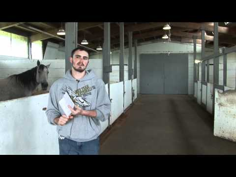 OSU Horse Center Tour