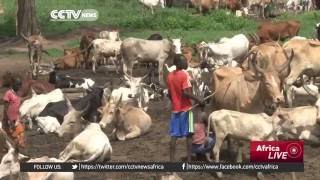CCTV : A Number Of Children Still Being Held Hostage In South Sudan