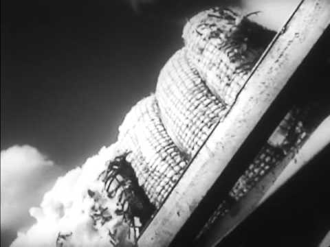 The River (1939)