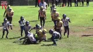TwinSportsTV: Decatur Army Camo vs. Dekalb Yellow Jackets 11U Football