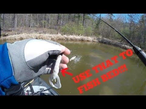 Shearon Harris Lake - Bed Fishing! Searching For 10+ Lber...