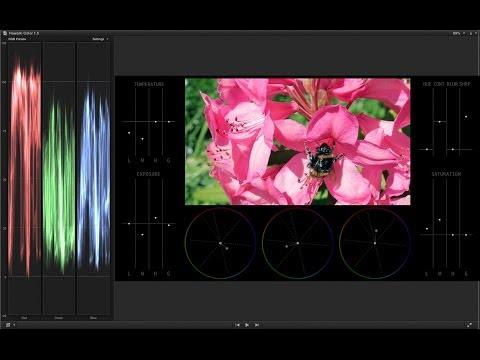 Hawaiki Color Demo Video