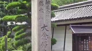 平野区 大念仏寺