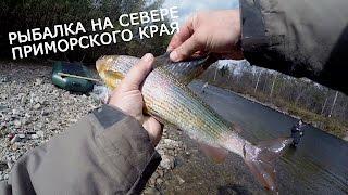 Рыбалка на Севере Приморского края (приключение)(В октябре 2015 года мне все таки удалось вырваться из городской суеты и отправиться в глубь Приморского края,..., 2016-03-15T06:28:27.000Z)