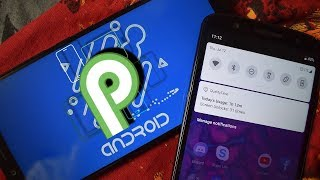 Android 9.0 P Name Leaked!!! Final Release Date Revealed!