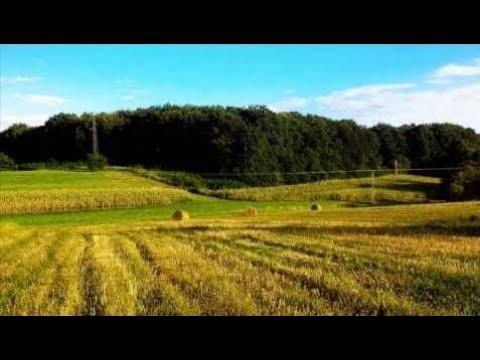 Chillstep, Santai, Melodic Dubstep Mix + Gambar Alam (Ps)