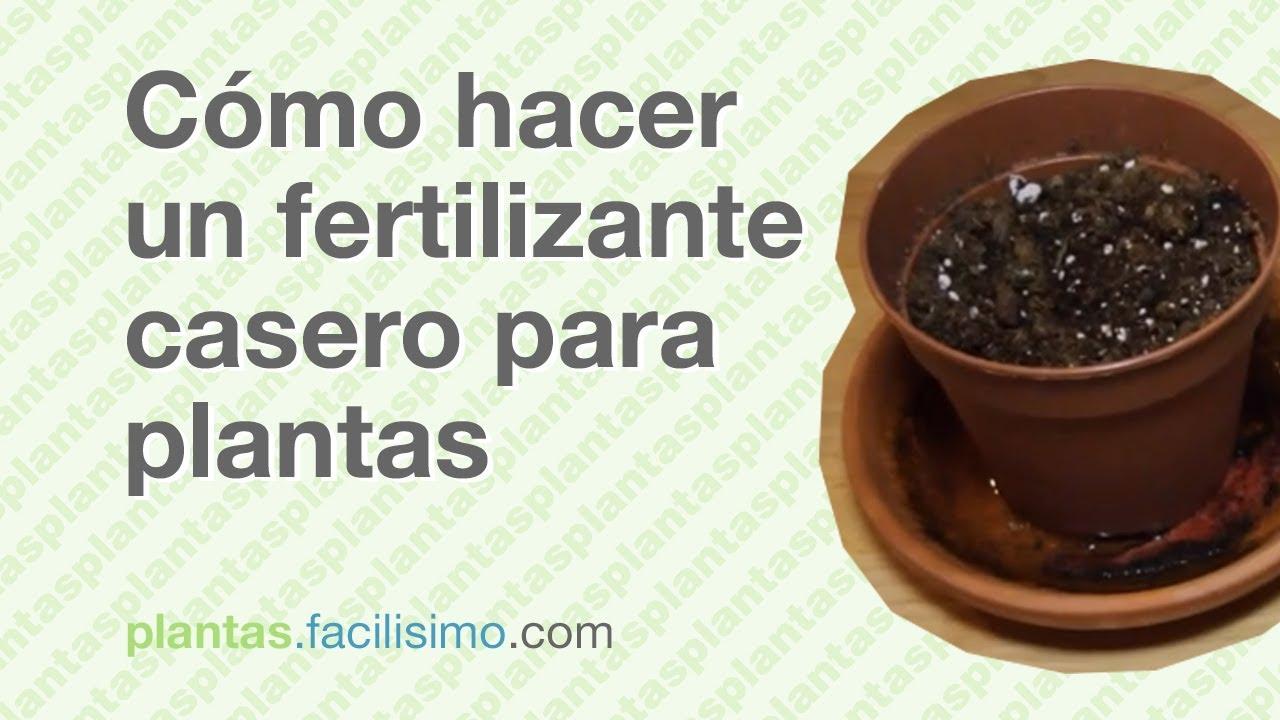 C mo hacer un fertilizante casero para plantas - Abono organico para plantas ...