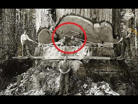 32 SHOCKING RARE HISTORICAL PHOTOS THAT'LL BLOW YOUR MIND