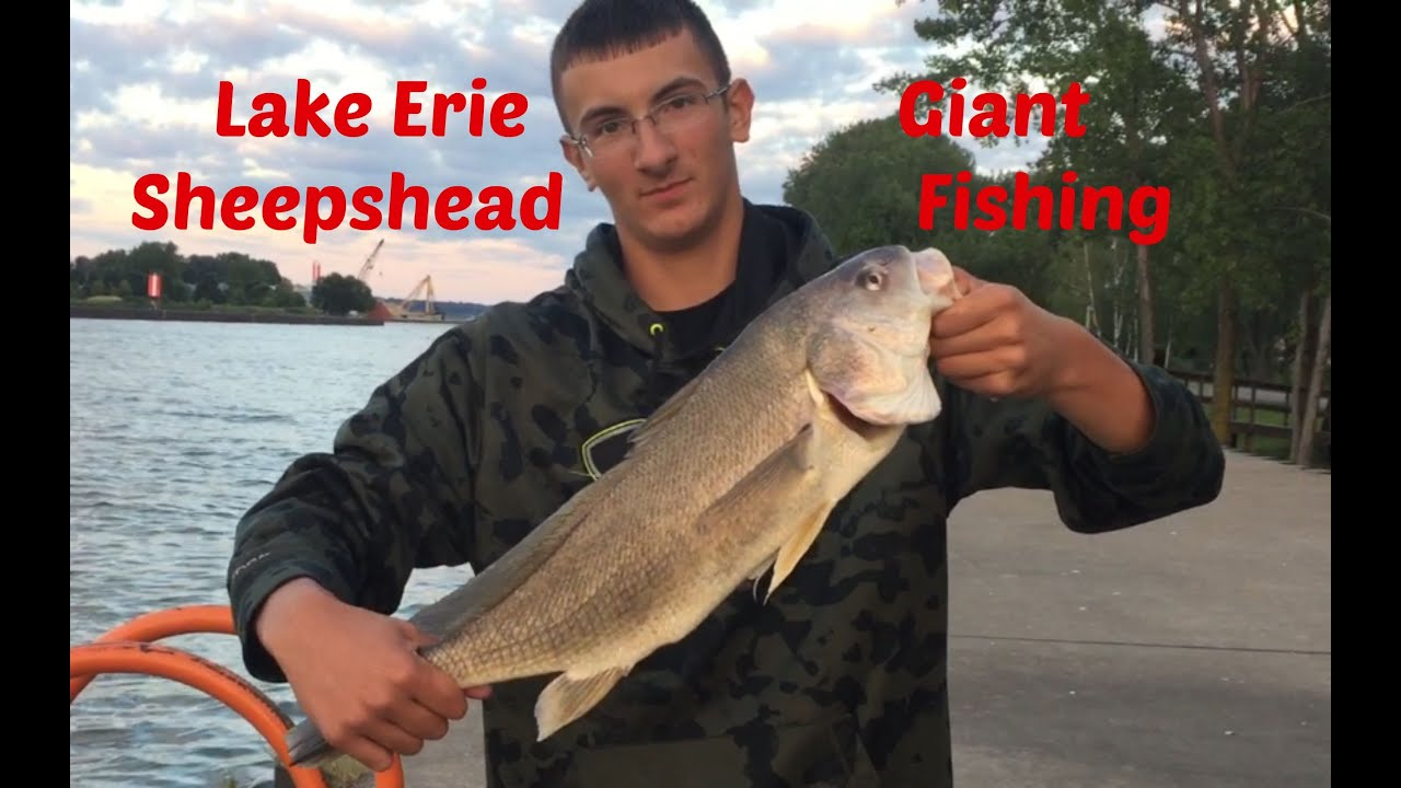 Ice fishing report erie pa all the best fish in 2018 for Fishing report lake erie