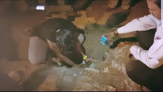 Rescuing Dog Stuck in Drain Pipe