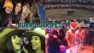 Video FELIZ AÑO NUEVO, FELIZ BURRO 2018 | gracielaaaj download MP3, 3GP, MP4, WEBM, AVI, FLV Januari 2018