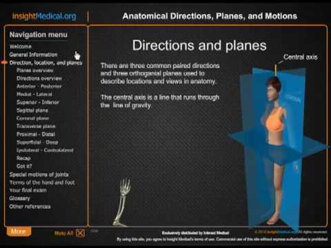body planes and direction approach The three basic planes of the body used in medicine are sagittal, coronal or frontal, and axial the sagittal plane is a plane cutting down the body splitting the body into right and left sides .