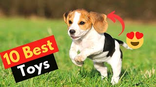 10 Best Dog Toys for Beagles to Help Channelize Their Energy