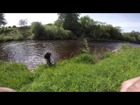 Jud & Tommy Sea Trout Burns Stream Canonbie Esk
