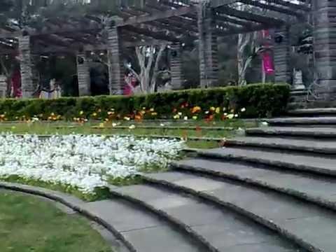 Sandringham Gardens in Hyde Park Sydney, Australia