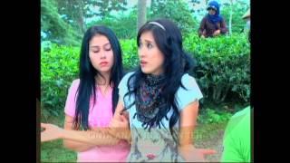 SINEMA SORE : CINTA ANAK JURAGAN TEH (trailer)