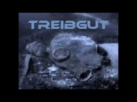 Harry Schwarz - Treibgut (Techno Mix 2013)