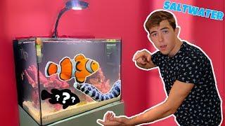 buying-my-first-saltwater-aquarium-funny
