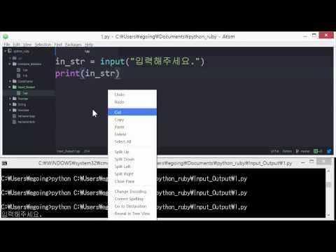 Python & Ruby - 입력과 출력 1 : 기본