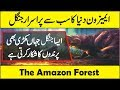 Amazon Rainforest Wildlife Full Documentary in Urdu/Hindi (Amazon The Lungs of Earth)