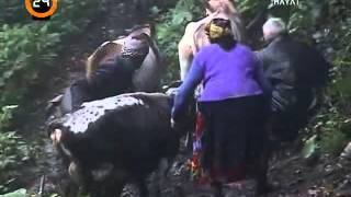 Topluca Köyü (mçanu) Belgeseli FULL - 24 tv - Çamlıhemşin Rize (2003)