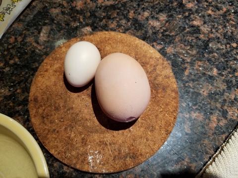 ven que el huevo era demasiado grande y al abrirlo paso esto