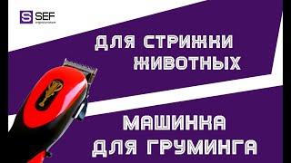 Обзор машинки для стрижки животных Gemei GM-1023 - SEF5.com.ua