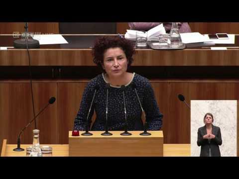 20161013 Politik live  Nationalratssitzung 2 Alev Korun Grüne 1435239410