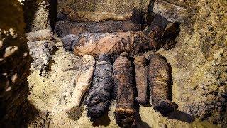 Более 50 мумий в одном месте: находка египетских археологов