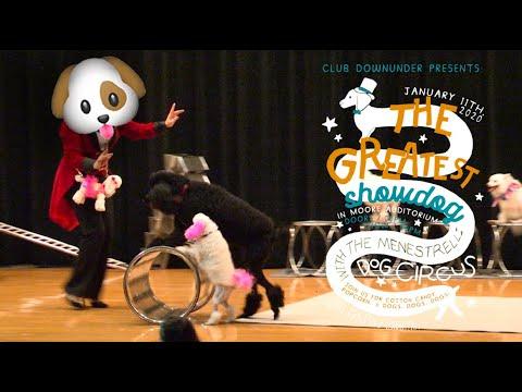 CDU Presents: The Menestrelli Dog Circus!