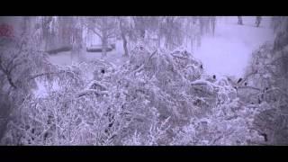 First Big Snow in Kharkiv 2015 - Большой снегопад 02.12.2015 Харьков(Красивый и ужасный снегопад в декабре 2015 года снимал с балкона в Харькове - Салтовка https://www.facebook.com/sergey.kolomietz...., 2016-02-01T04:30:01.000Z)