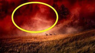 Красный туман. Аномальное природное явление, которое еще никто не смог объяснить