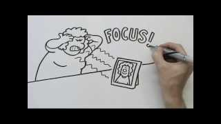 Doodle Ads- Whiteboard Animation -Weight Loss Boot Camp & Retreat