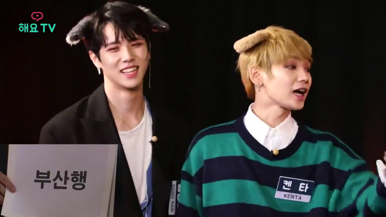[ENG SUB] JBJ HeyoTV Private Life - Cat and Dog Speed Quiz