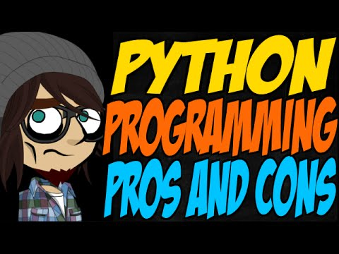 Python Programming Pros and Cons