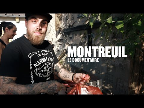 Montreuil, le doc - Swift Guad, le narvalo - Episode 1