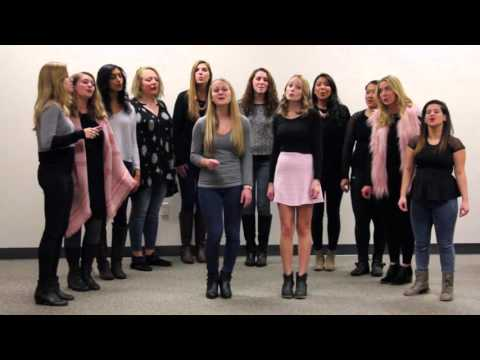Taylor Swift Mashup  Love StoryYou Belong with Me A Capella