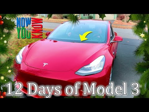 2 Windshield Wipers! - The 12 Days of Model 3